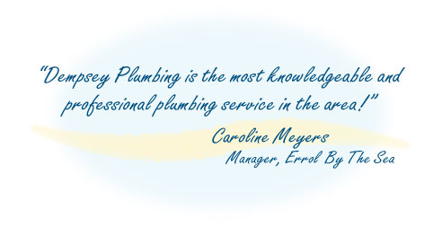 Dempsey Plumbing is the most knowledgeable and professional plumbing service in the area! Caroline Meyers, Manager, Errol By The Sea Condominiums, New Smyrna Beach, Florida.